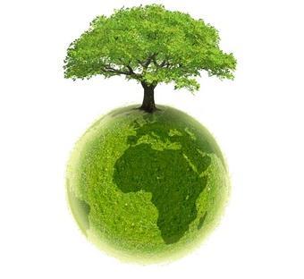 détergeants écologiques
